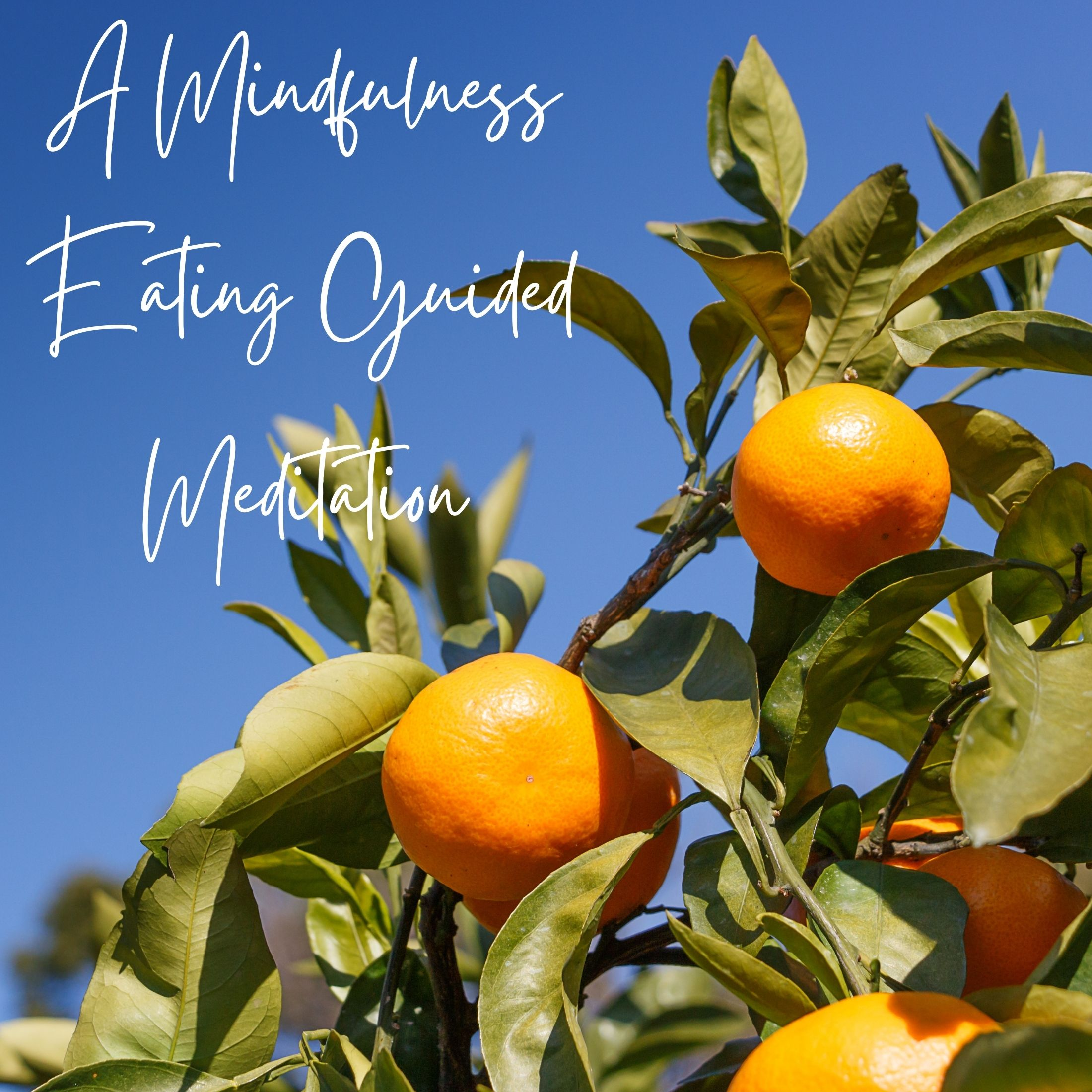 my happy soul guided meditation eating